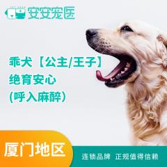 【厦门安安】乖犬【公主/王子】绝育安心 (呼入麻醉) 公犬呼吸麻醉 0-10kg