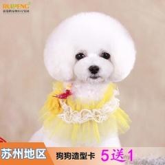 【苏州】萌宠造型卡(犬6次) W<3