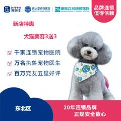 【新瑞鹏-东北区】新店特惠犬猫美容造型买3送3 狗3-6kg