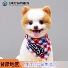 【甘肃】 狗狗 经典造型套卡 3送1 0-3kg
