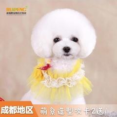 【新春】成都 犬 萌系造型套卡 2送1 狗狗 0-3kg
