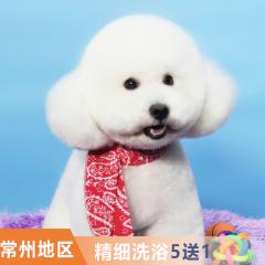 【常州全门店】萌宠精细洗浴次卡5送1 短毛猫2-5kg