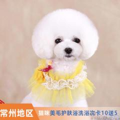 【常州瑞鹏、安安、宠颐生、艾贝尔】猫咪美毛护肤浴洗浴次卡10送5 猫 W<2(短毛)