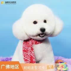 【瑞鹏-广佛地区】狗狗 洗美套卡(5送1)(hnrpmr002) 美容造型 5送1 3.01-6kg