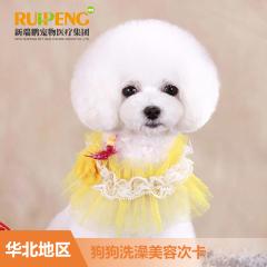 【新春】【新瑞鹏华北】狗狗洗浴美容次卡C套餐 狗狗洗浴买5赠5 0-3kg