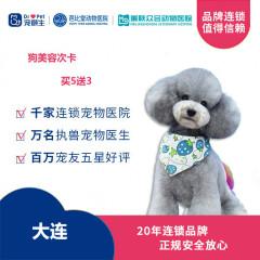 新春【新瑞鹏-东北区】大连-狗狗美容次卡买5送3 犬:0-3kg