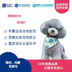 【新瑞鹏-东北区】锦苏内-狗美容次卡买5送3 0-6kg