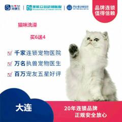 新春【新瑞鹏-东北区】大连-猫咪洗澡次卡6送4 短毛猫