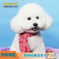 【新春】【贵阳瑞鹏】狗狗造型套卡 5送2 普美 0-3 kg