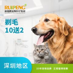 【深圳瑞鹏】新春剃毛10送2 猫咪