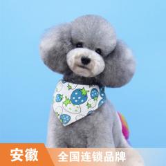 【安徽瑞鹏、宠颐生、艾贝尔】狗狗精细级洗浴次卡(13次) 3-6kg