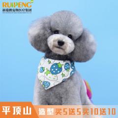 【平顶山新店】犬猫造型5送5,10送10 经典造型5送5 狗3-6kg