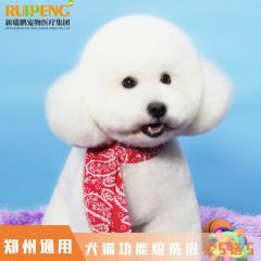【郑州区】 犬猫功能级洗浴买5送5 功能级洗浴买5送5 犬:0-3kg