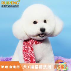 【平顶山区通用】犬/猫精细洗浴买5送2 犬/猫精细洗浴 买5送2 短毛0-2kg