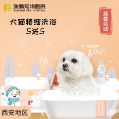 【西安】犬猫精细洗浴套卡 5送5 犬:0-3kg