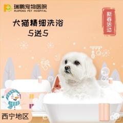 【西宁】犬猫精细洗浴套卡 5送5 犬:0-3kg
