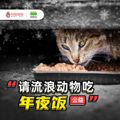 【新客专属】请流浪动物吃年夜饭*101g粮
