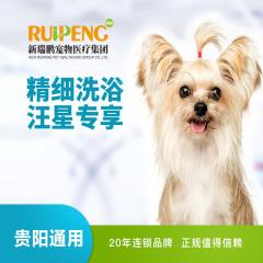 【新春】【贵阳瑞鹏】狗狗精细洗浴 5送2 狗狗 0-3kg