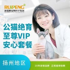 【扬州宠颐生】公猫绝育至尊VIP安心套餐 公猫【呼吸麻醉】