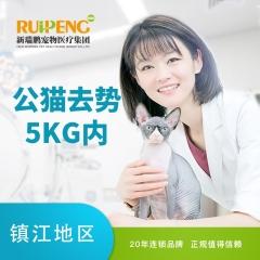 【镇江安安宠医】5KG以下公猫去势套餐 公猫绝育 0-5kg
