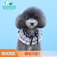 【深圳安安】剃毛5送1 犬0-3kg