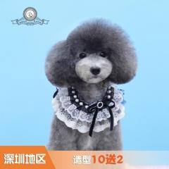 【深圳爱玩乐】造型10送2 犬W≤3kg