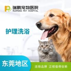 【东莞瑞鹏】护理洗浴  10送2 猫(短毛)