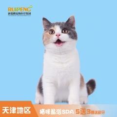 【新瑞鹏天津+新乡】猫咪SPA盐浴 猫咪盐浴SPA 买5赠3 短毛