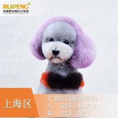 【阿闻上海】犬猫美毛护肤浴新店活动(市区版) 10送12犬3-6kg