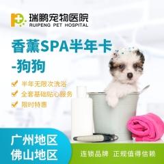 【新瑞鹏-广佛】狗狗 半年/全年 香薰SPA优惠卡(hnrpmr004) 半年卡 0-3kg