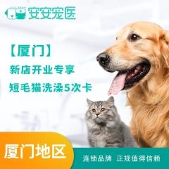 【厦门】开业活动短毛猫洗澡5次卡 短毛猫洗澡5次卡 1.5-5kg