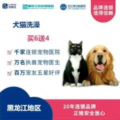 【新瑞鹏-东北区】黑龙江犬猫洗澡6送4 犬:5公斤内
