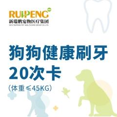 【甬绍温】狗狗健康刷牙20次卡(体重≤45KG)