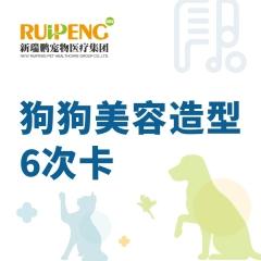 【甬绍温】狗狗美容造型6次卡 3-6KG