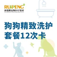 【甬绍温】狗狗精致洗护套餐12次卡 长毛犬 3-6kg