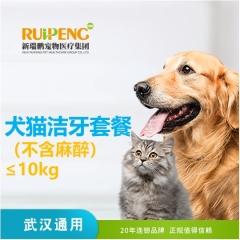 【武汉区域】洁牙套餐(不含麻醉) 猫咪 0-10kg