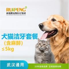 【武汉区域】洁牙套餐(含麻醉) 狗狗 0-5KG