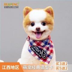 【江西通用】萌宠经典造型买3送1,买5送2 犬经典造型3送1 0-3kg