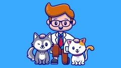 9.9耳道检查——安徽新店开业活动专享 猫