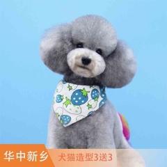 【华中新乡】犬猫造型3送3 犬3送3造型0-3kg