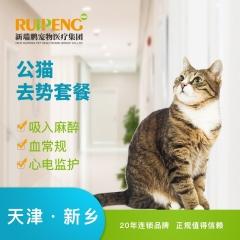 【新瑞鹏天津+新乡】公猫去势套餐 公猫【呼吸麻醉】 0-10kg
