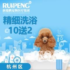 【杭嘉湖】狗狗精细洗浴 10送2 6-10kg