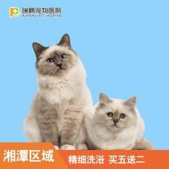 【湘潭郴州区域】猫咪精细洗浴特惠套餐  买5送2 精细洗浴5送2 短毛猫精细0-2KG