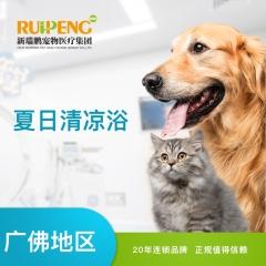 【新瑞鹏-广佛】猫咪清凉浴 5送1(GF012) 猫咪抗菌止痒浴 5送1 短毛