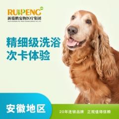 【安徽武里山】犬洗浴99元 4次卡 3-6kg