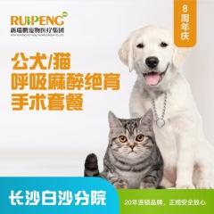 【长沙】白沙8周年庆-公猫/犬呼麻绝育套餐198元 公犬/猫呼麻绝育手术套餐 6kg以下公犬猫,超出
