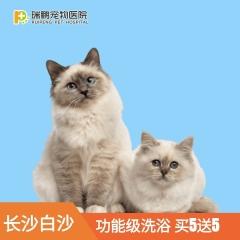【长沙】 白沙8周年庆-功能洗浴买5送5、造型买5送3 功能洗浴买5送5 犬:0-3kg