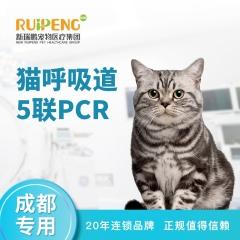 【成都阿闻】猫呼吸道5联PCR 猫咪
