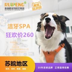 【苏皖阿闻】920狂欢节唯尔洁牙SPA口腔护理轻度套餐(苏州,常州,南通,扬镇) 犬-轻度-10kg
