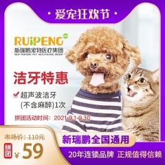【920爱宠狂欢节】【拼团】到店服务-洁牙特惠 犬猫通用 1次